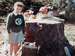 Beryl Ave Old Pine Tree