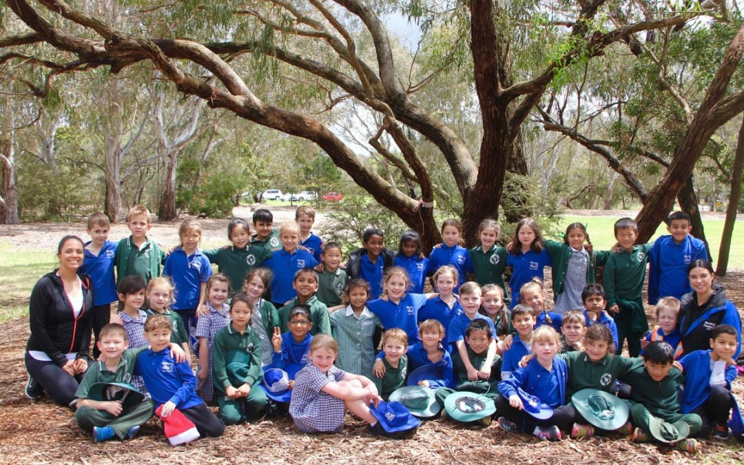 Year 1 Penpal's Excursion