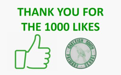 THANK YOU FOR THE 1000 LIKES