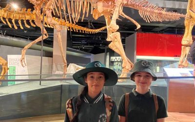 IMAX & MUSEUM YEAR 5 EXCURSION