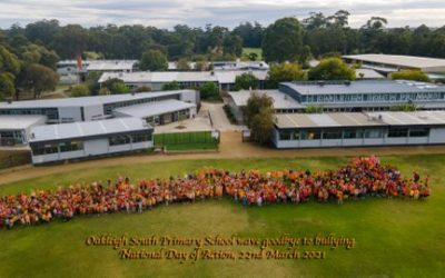 NATIONAL DAY AGAINST BULLYING & HARMONY DAY